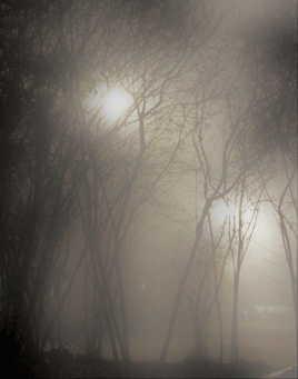 L'âme au bord de la nuit..