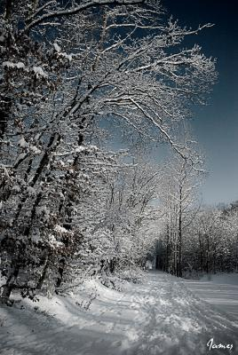 L'hiver en Beauce
