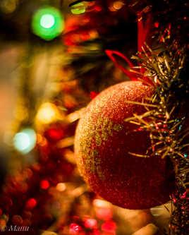 C'est la belle nuit de Noel