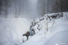 Perdu dans la neige