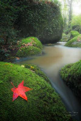 Ruisseau de Quip