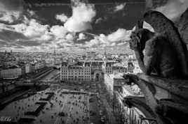 Styge ND de Paris