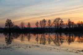 Innondations en Alsace