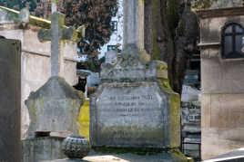 Le chat du cimetière