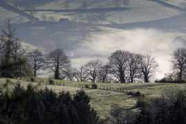 Lever de brume sur la campagne Brionnaise