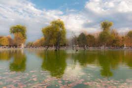 Bassin des Tuileries 4