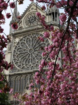 Notre-Dame de Paris au printemps
