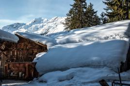 sous la couette neigeuse