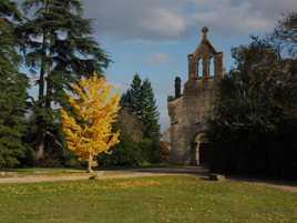 Chapelle de Roquetaillade
