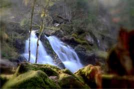 Cascade du Tendon
