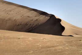 surveillance du desert