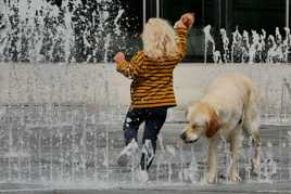 L'enfant et le chien