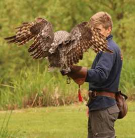 un oiseau et son soigneur