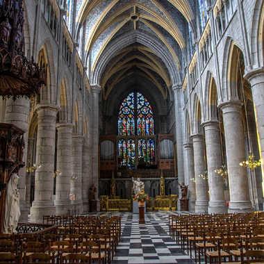 La cathedrale de Liège. par bleu