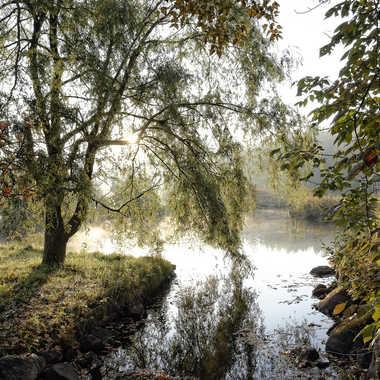 La brume d'automne laisse place au soleil par ChristianF