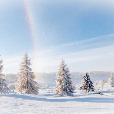 Premières neige... par Dom71