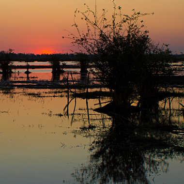Jeux d'ombres sur le marais par patrick69220