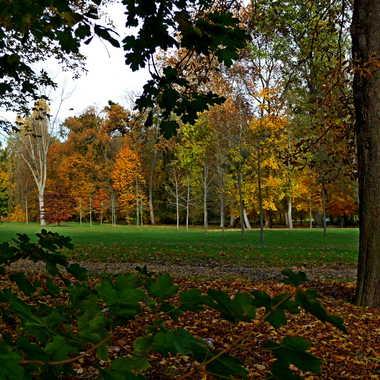 nuances d'automne par LABADIE