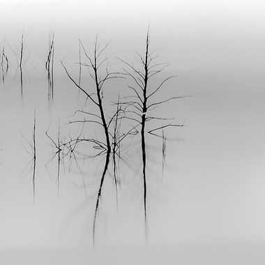 Inondation brumeuse par Gilles-K