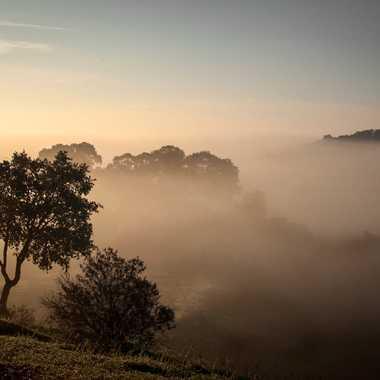 Un beau matin brumeux  par Slowdef@gmail.com