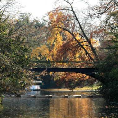 couleur d automne  par lionel_4291