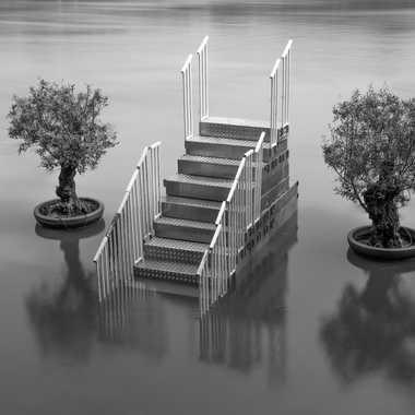 Paris - Inondations juin 2016 par Fulcran