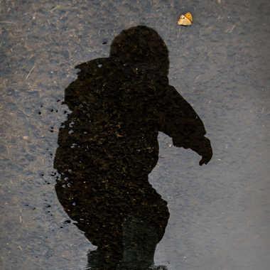 Reflet joueur par Dav.sv