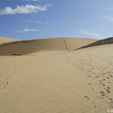 A l'assaut des dunes par sand.george