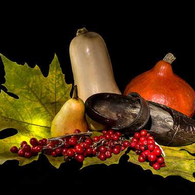 L'automne en sabots. par kikineth
