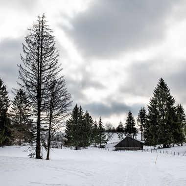 Lumière hivernale par bobox25