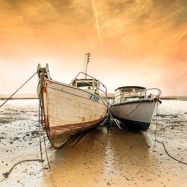 Les bateaux de Bretagne par thierry_2090