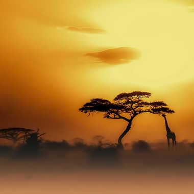 Kenya par Christian Heitz