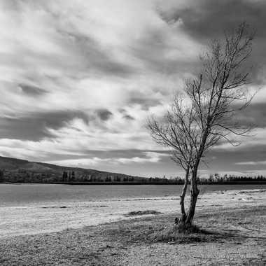 Rive du Lac par Buissem