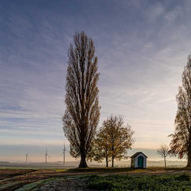 Les couleurs chaudes de l'automne s'effacent doucement par Stefano