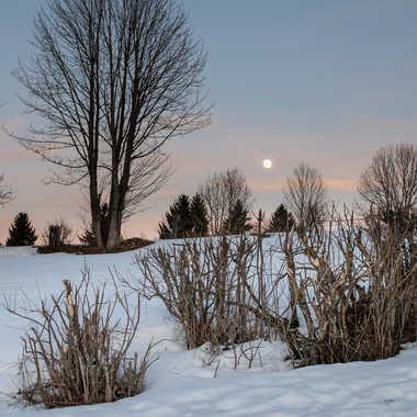 Lever de lune par bobox25
