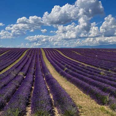 Ciel de Provence. par Philgreffe