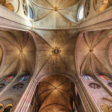 Archives gothiques (71) par Theodoric