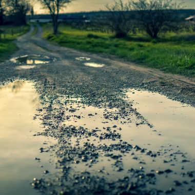Chemin trempé par Nico_Deumille