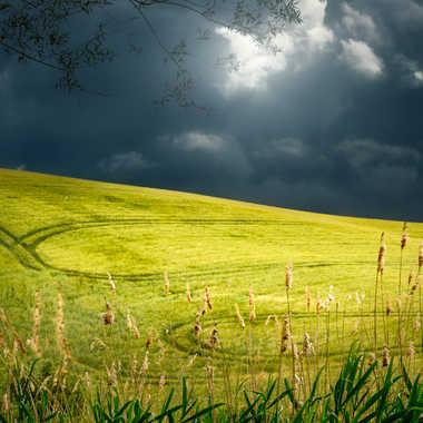 Juste avant l'orage par Yaccopro