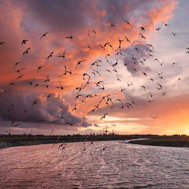 Ciel d'orage sur la Vanlée par pontesrocs