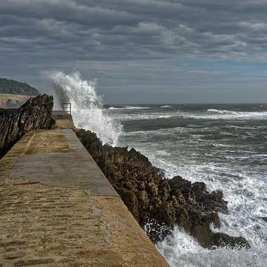 Grain breton par Nikon78