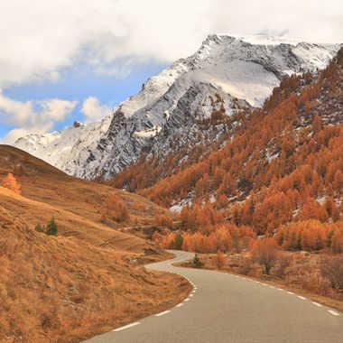 La route par Farim