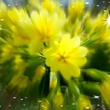 le printemps est là !!!!! par brj01