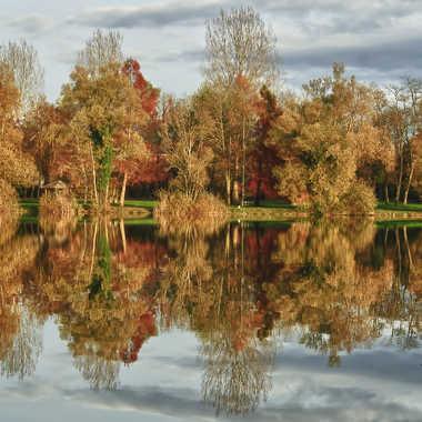 reflets d'automne par pixel38300