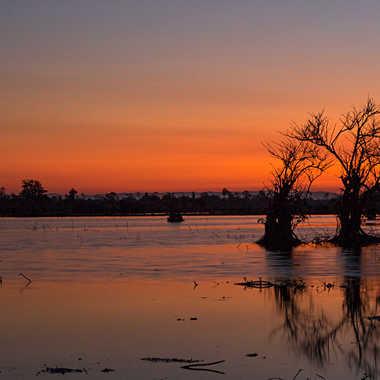Lever du jour sur le marais. par patrick69220