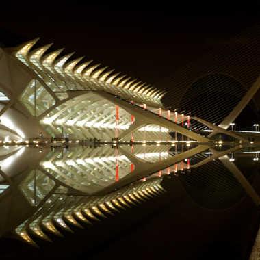 Reflets de  nuit, suite. par Vicente.V