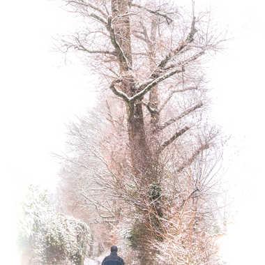 La neige est bien là par Philipounien