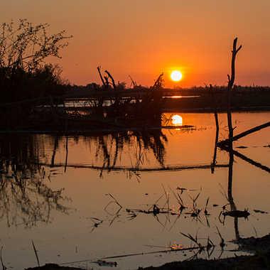 Ombres sur le marais par patrick69220