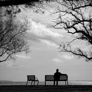 Contemplation par Nikon78