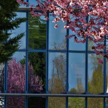 Méli mélo de reflets par Luciephotographie
